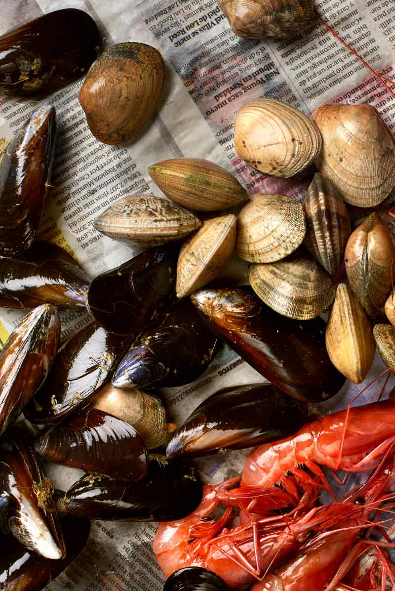 forfood-roc035-product-seafood-photography